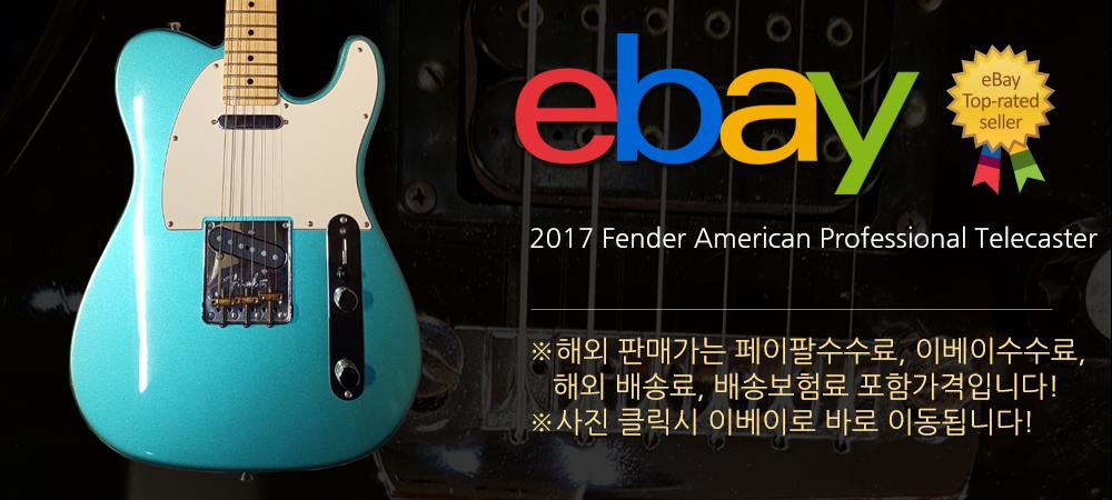 2017 펜더 아메리칸 프로페셔널 텔레캐스터